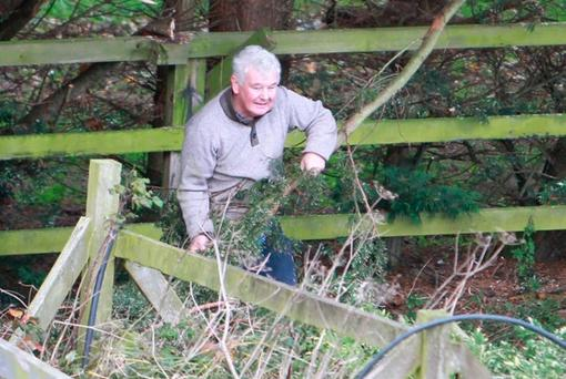 John Gilligan cutting trees at his home on the Jessbrook Complex. Photo: Sunday World