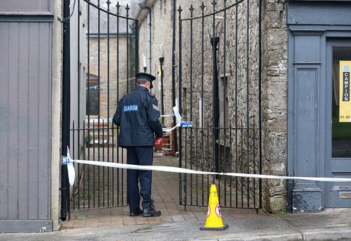A Garda at the scene of the killing in Tipperary. Photo: Frank McGrath