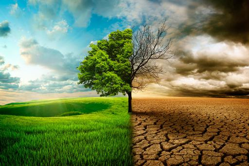 Farming can expect substantial negative effects from climate change