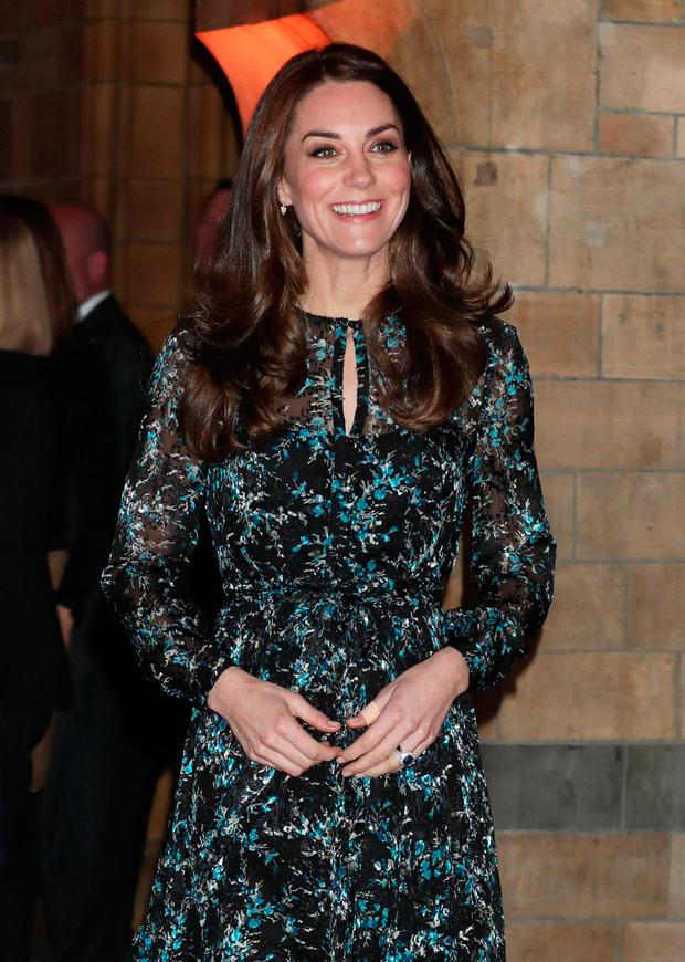 Britain's Catherine, Duchess of Cambridge arrives at the Natural History Museum to attend a children's tea party to celebrate Dippy the Diplodocus's time in Hintze Hall in London, Britain November 22, 2016. REUTERS/Yui Mok/Pool