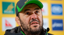 24 November 2016; Australia head coach Michael Cheika during a press conference at the RDS Arena, Ballsbridge, Dublin Photo by Seb Daly/Sportsfile