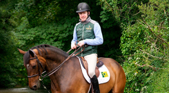 Olympic showjumper Greg Broderick on Going Global at Ballypatrick near Thurles, Co Tipperary Photo: Sinead Ni Riain