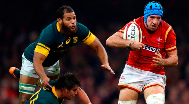 Justin Tipuric makes a break to score the second try for Wales during their victory over South Africa. Photo: Getty