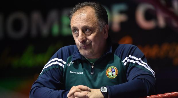 Irish head coach Zaur Antia. Photo: Paul Mohan/Sportsfile