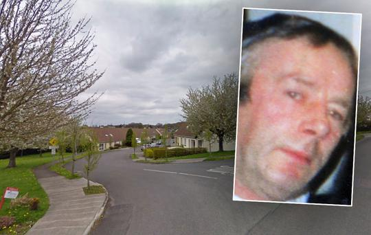 James Goonan (inset) died at home on Hawthorn Drive, Crinkle, Birr, Co Offaly (Picture: Google Maps)