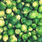 There are more than 110 different varieties of sprouts.