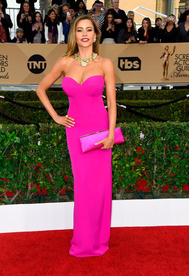 Actress Sofia Vergara arrives at the 22nd Annual Screen Actors Guild Awards at The Shrine Auditorium on January 30, 2016 in Los Angeles, California. (Photo by Frazer Harrison/Getty Images)