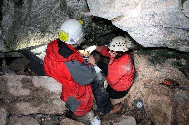 The skeleton was found in a cave in the Burren, Co Clare