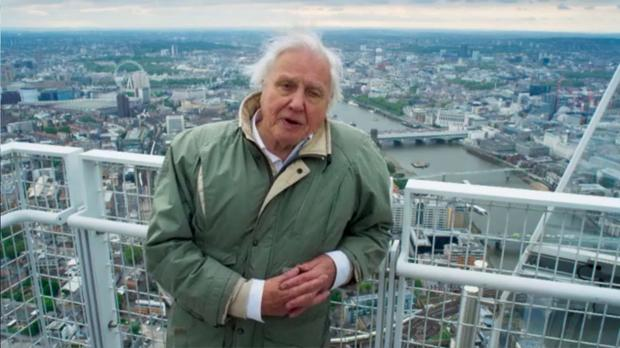 David Attenborough's closing message was a powerful one. Pic: BBC Planet Earth II