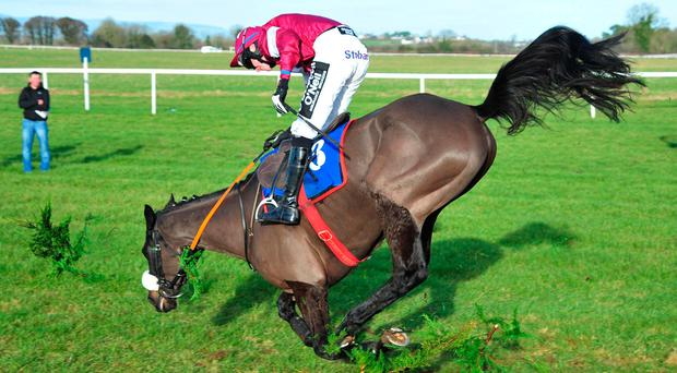 Double Scores and Jack Kennedy part company after jumping the last in the beginners' chase at Thurles yesterday. Photo: HEALY RACING