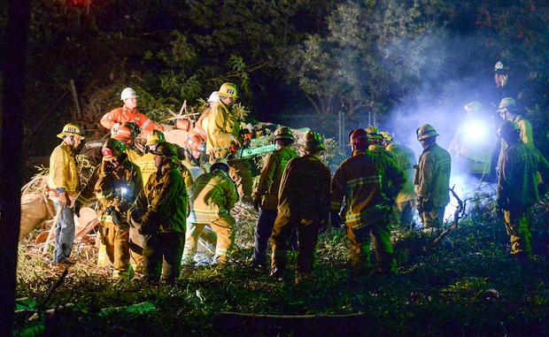 Los Angeles County Fire Dept. firefighters work at the scene where a large tree fell on a wedding party (Photo: AP)