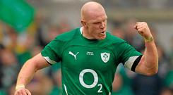 Paul O'Connell Photo: Paul Mohan / SPORTSFILE