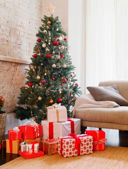 The Christmas tree is a menace for some. Stock Image