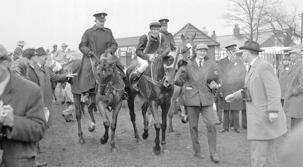 Foinavon and jockey John Buckingham being led in after their shock victory in the 1967 Aintree Grand National Picture: PA