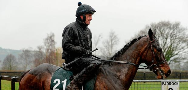 Ruby Walsh will be hoping to partner Min to another victory at Leopardstown. Photo: Sportsfile