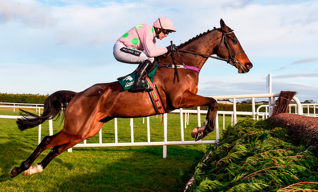 Douvan, under Ruby Walsh, at his majestic best as he sails over the second fence at Leopardstown. Photo by Matt Browne/Sportsfile
