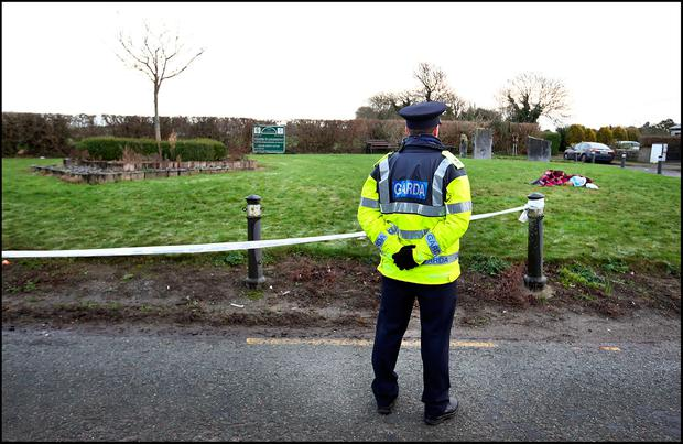 A Garda at the scene of the possible Hit and Run at Loughshinny in North County Dublin. Pic Steve Humphreys 27th December 2016