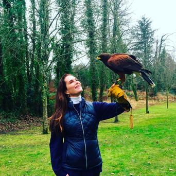 A new best friend: Brooke Shields enjoys the company of Darby, the Harris Hawk at Dromoland Castle