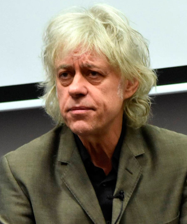 Bob Geldof Photo: Cathal Burke / VIPIRELAND.COM