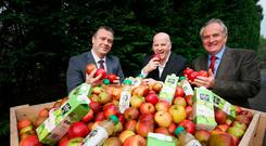 Sean Gallagher with Malachy Magee and Peter Mulrine and apples from the Mulrine orchard. Photo: Brian Farrell