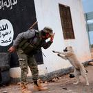 A fighter from the Free Syrian Army plays with a dog at a checkpoint captured from Isil near the town of Qabasin, 30km from Aleppo. Photo: Nazeer al-Khatib/AFP/Getty Images