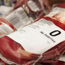 Gay men will from this week be able to donate blood if they meet the other blood donor selection criteria. Photo: GETTY