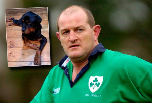 Peter Clohessy and inset his dog Robin
