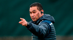 Pat Lam makes his point. Photo: Piaras Ó Mídheach/Sportsfile
