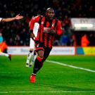 Bournemouth's Benik Afobe celebrates scoring their equaliser