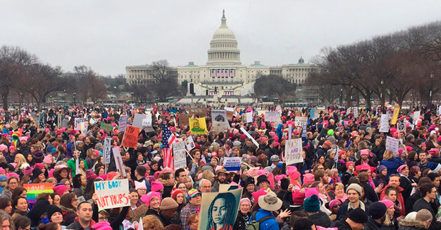Protesters at the Women's March on the National Mall in Washington DC Photo: ANDREW CABALLERO-REYNOLDS/AFP/Getty Images
