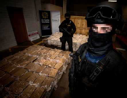 Cannabis worth €37.5 million seized at Dublin Port