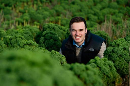 Despite still being in college Jack Parsons has ambitious plans for his business, O'Kale Krisps. Photo: Andrew Downes