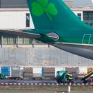 Aer Lingus cargo trucks pictured near an aircraft at Dublin Airport. Photo: Colin O'Riordan