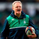Ireland head coach Joe Schmidt Photo: Stephen McCarthy/Sportsfile