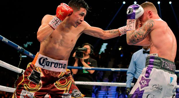 Carl Frampton, IRE., and Leo Santa Cruz, USA fight for WBC Super Featherweight title at the MGM Grand Arena in Las Vegas on January 28, 2017. Santa Cruz won a majority decision. / AFP PHOTO / John GurzinskiJOHN