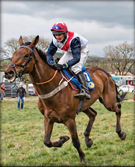Jockey John O'Connor who was killed in a car crash on the Mallow-Killarney road on Saturday, racing at Doneraile 2016