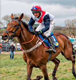 Jockey John O'Connor died in the collision on Saturday. Photo: Provision