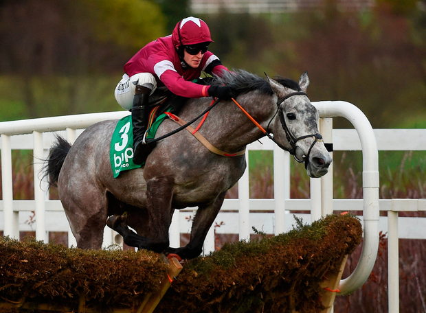 Henry De Bromheads Petit Mouchoir Under David Mullins Negotiate Their Way Over The Final