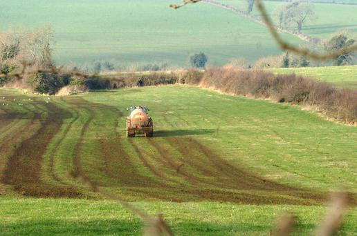 Faded pastures were covered wall to wall with a heavy brown underlay of slurry