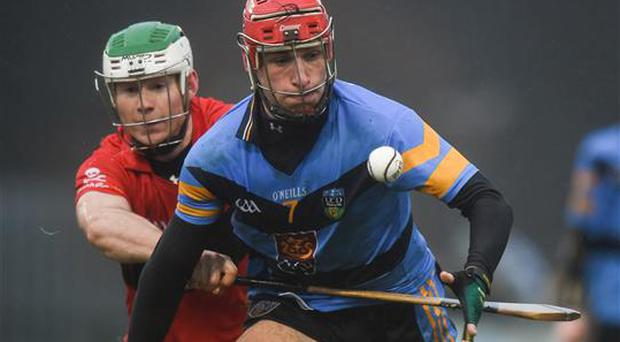 2 February 2017; Cillian Buckley of UCD in action against Mark O'Brien of UCC during the Independent.ie HE GAA Fitzgibbon Cup Group D Round 2 match between University College Dublin v University College Cork at UCD, Belfield, Dublin. Photo by Cody Glenn/Sportsfile