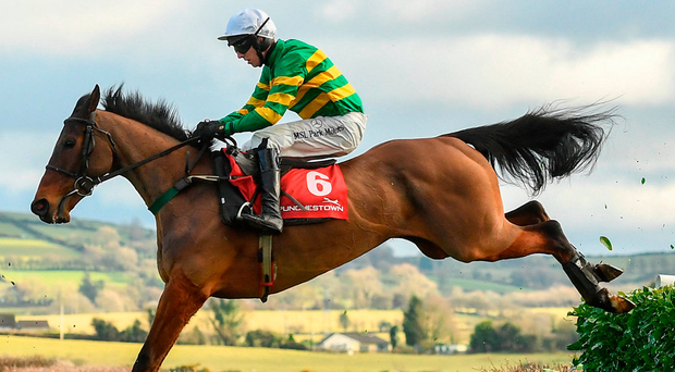 Favourite Colour Squadron and rider Mark Walsh in full flight during the PP Hogan Memorial Cross Country Chase at Punchestown. Photo: Ramsey Cardy/Sportsfile