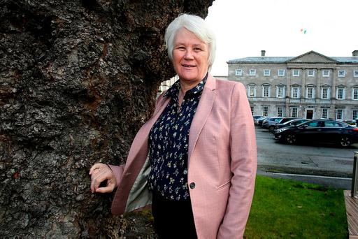 Catherine Byrne, Minister for Communities and National Drugs Strategy, outside Leinster House. Photo: Tom Burke