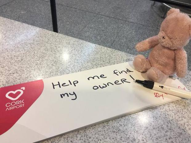 This teddy bear has been stranded in Cork Airport
