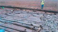 Under threat: A section of Bronze Age timber trackway in the Mayne Bog, Co Westmeath, which was exposed during a test excavation in May 2015