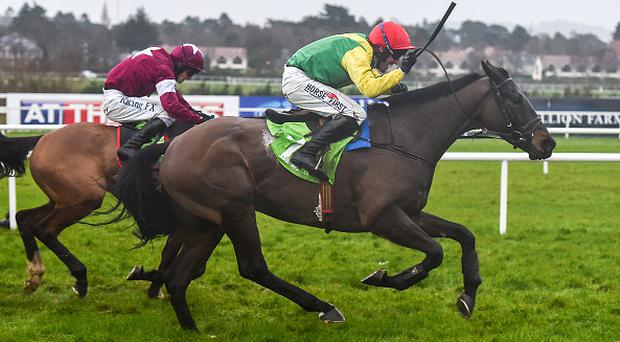 Sizing John (pictured) was one of the punter's winners (Photo By Cody Glenn/Sportsfile via Getty Images)
