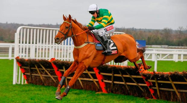 Yanworth, under Barry Geraghty, can enhance his Champion Hurdle claims with victory at Wincanton today. Image: ©Cranhamphoto.com