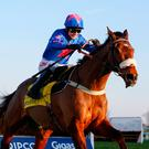 Cue Card ridden by Paddy Brennan pulls away from the last fence before going on to win The Betfair Ascot Steeple chase race, run during the Betfair Chase Raceday at Ascot