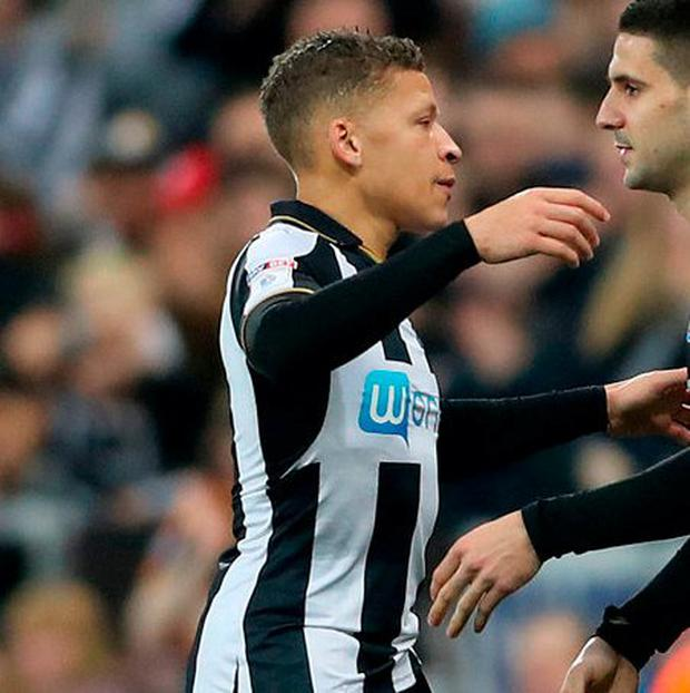 Newcastle United's Dwight Gayle. Photo: Owen Humphreys/PA