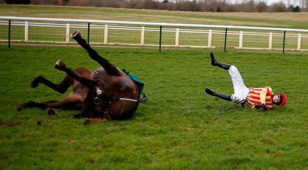 Paddy Brennan riding Global Stage fall at the last at Warwick Racecourse. Photo: Alan Crowhurst/Getty Images