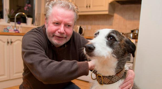 Aidan Mullen pictured with his dog Ted at his Kinsealy home Photo: Colin O'Riordan